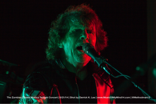 The Zombies | Twilight Concert