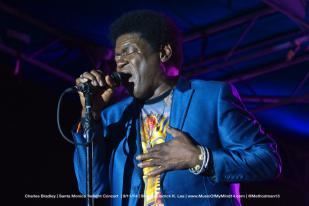 Charles Bradley | Twilight Concert Series 2014